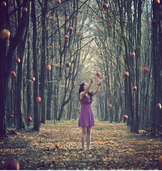 Могут ли яблоки падать в небо?