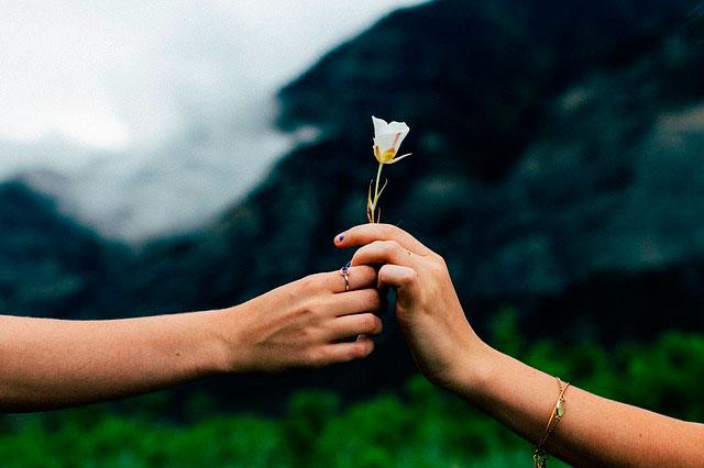 на любовь и замужество